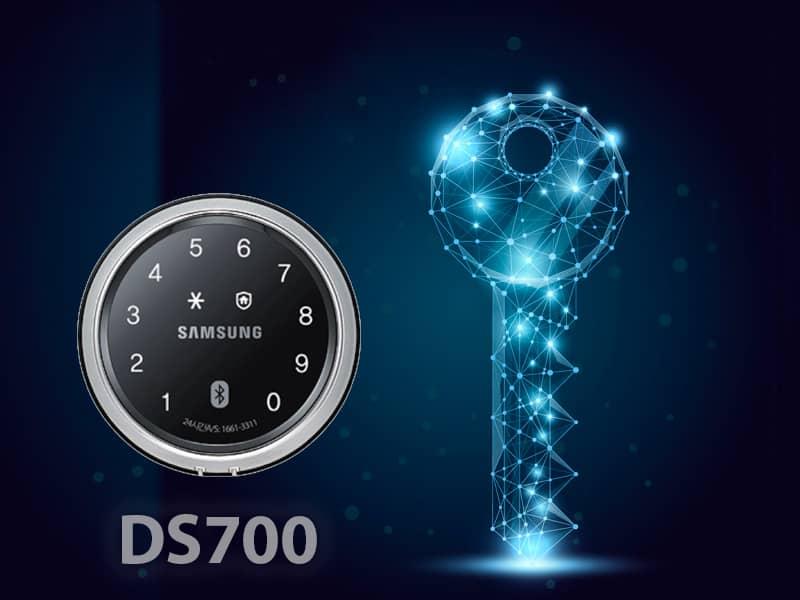 ds700
